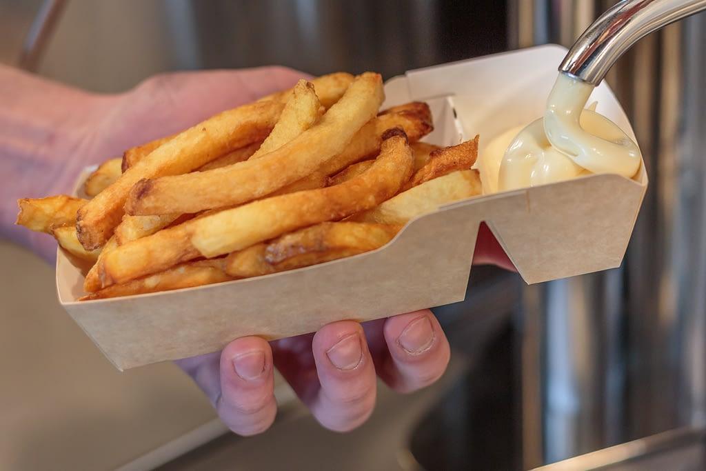 duurzaam en milieuvriendelijk frietbakje
